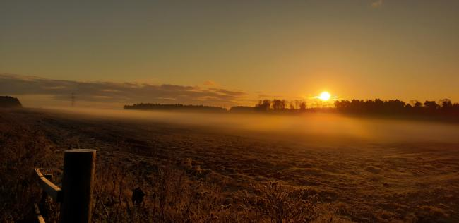 PICTURE OF THE WEEK: Beautiful misty scene