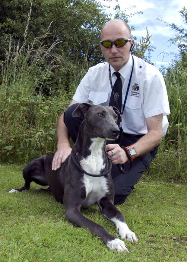 Recovering....the lurcher/greyhound crossbreed, pictured with a council dog warden, has found a new home.