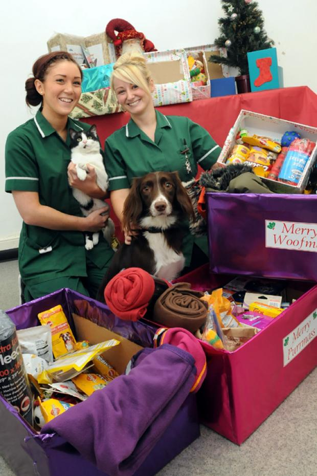 PICTURED: Nurses Katie Markland and Louise Brown with Betty the dog and Shed the cat.