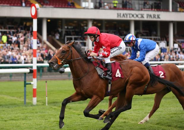 St Helens Star: VICTORY CHARGE: Snap Shots won the night's second race (Snap Shots)