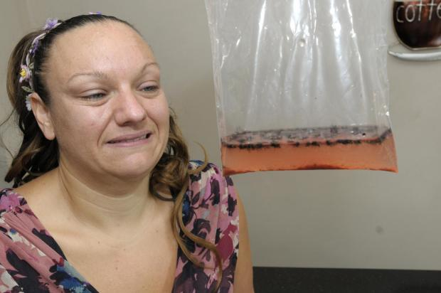 St Helens Star: ITCHY AND ANGRY: Jennifer Smith with some of the dead flies that were caught at her home