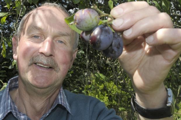 Farm boss Alan Abbot is setting the fruity challenge