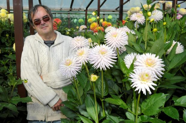 Philip Spark credits his love of growing Dahilias in helping him recover after a stroke