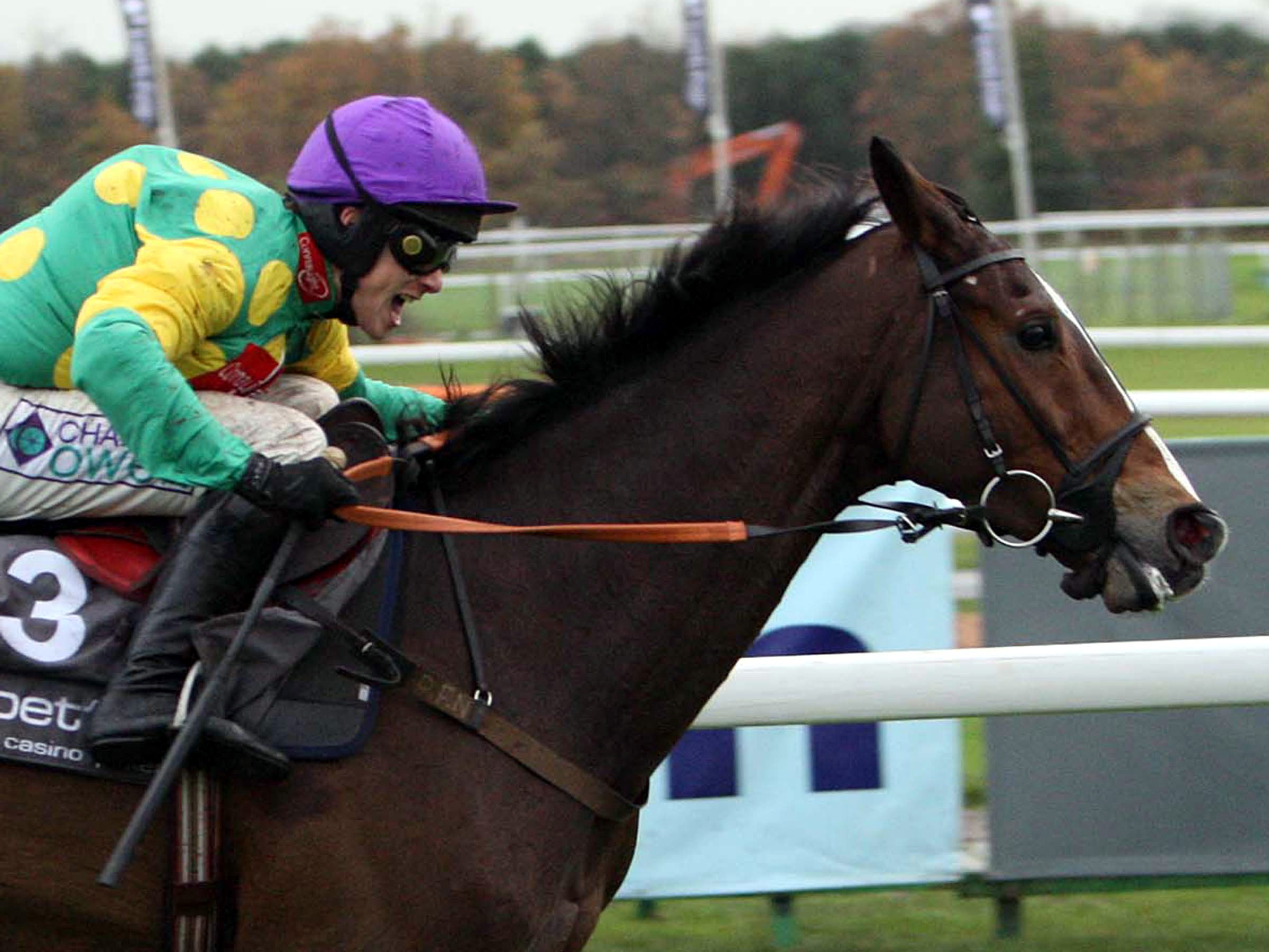 A statue of Kauto Star, an icon of Haydock's Park history, will be unveiled on Saturday.