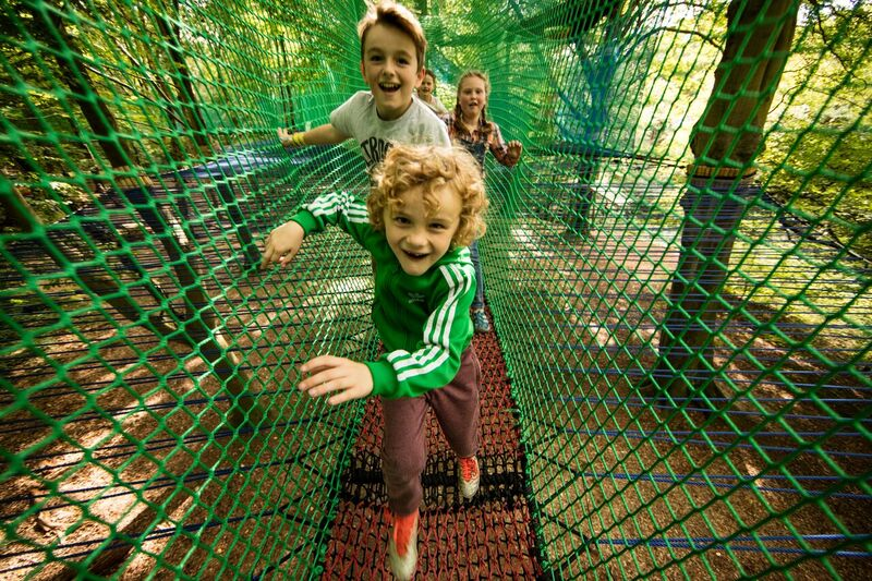 Youngsters enjoy Tree Top Nets at Heaton Park