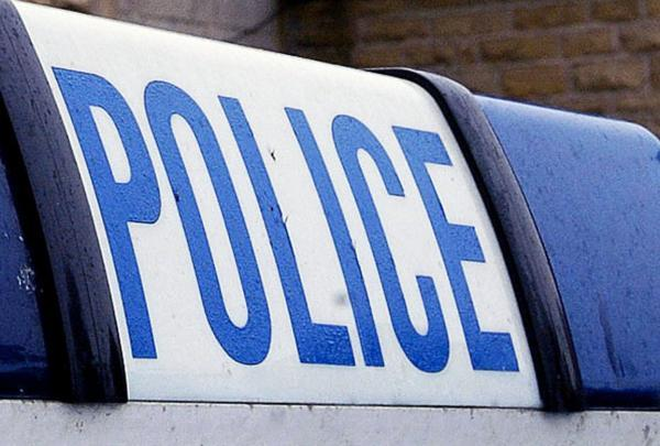 Burglars steal car from driveway in the early hours
