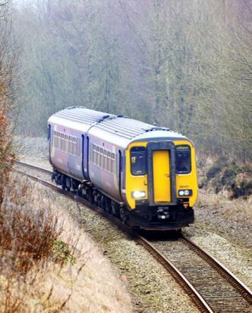 Trains disrupted after 'trespasser on tracks'